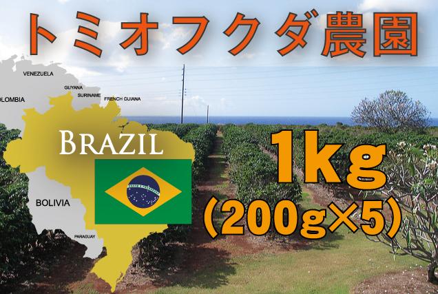 ブラジル トミオフクダ農園  1kg 中煎り
