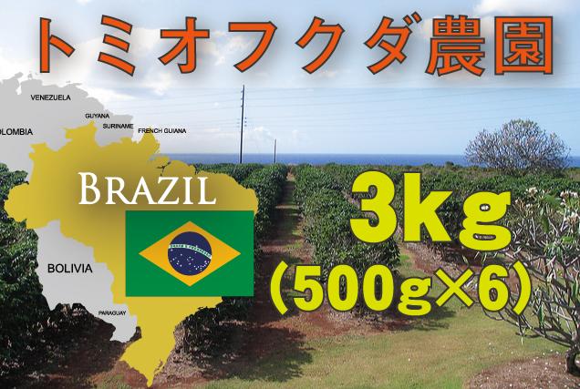 ブラジル トミオフクダ農園  3kg 中煎り