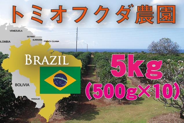 ブラジル トミオフクダ農園  5kg 中煎り