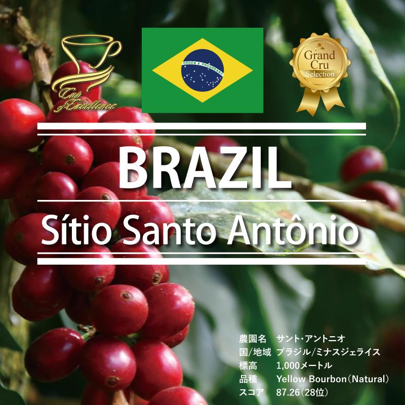 <ブラジル>国際コンテスト入賞のサント・アントニオ120g