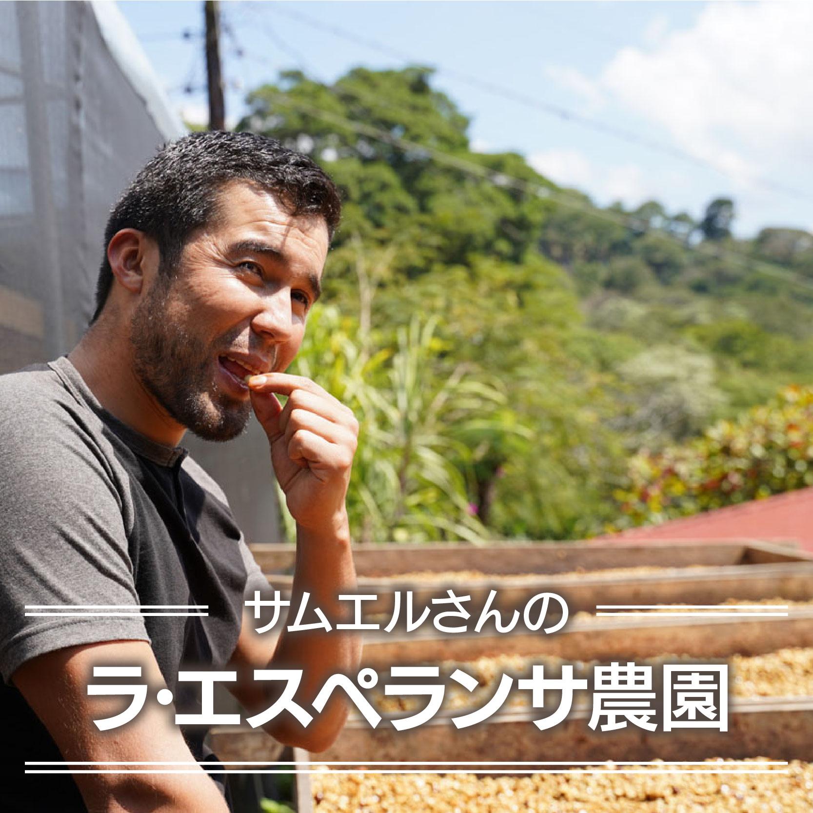 サムエルさんのラ・エスペランサ農園<ニカラグア>250g