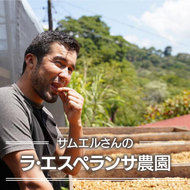 サムエルさんのラ・エスペランサ農園<ニカラグア>100g