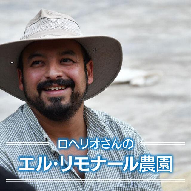 ロヘリオさんのエル・リモナール農園<グアテマラ>100g