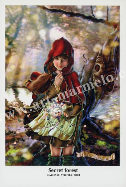 横田美晴のポストカード「Secret forest」