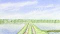 金井千絵の版画「五月の鏡」