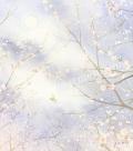 北沢優子の版画「薄曇りの香」
