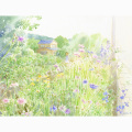 北沢優子の版画「道辺の花」