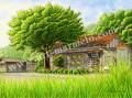 松本忠の版画「夏の樹」