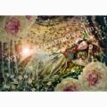 横田美晴の版画「The briar rose」