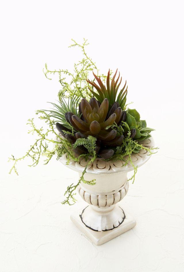 【造花インテリアグリーン】スタイリッシュな多肉植物アレンジA