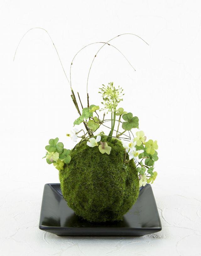 【造花 観葉植物 インテリアグリーン】苔玉 和風アレンジ9(下皿付き)