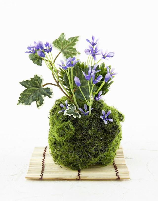 【造花 観葉植物 インテリアグリーン】苔玉 和風アレンジ19(下皿付き)