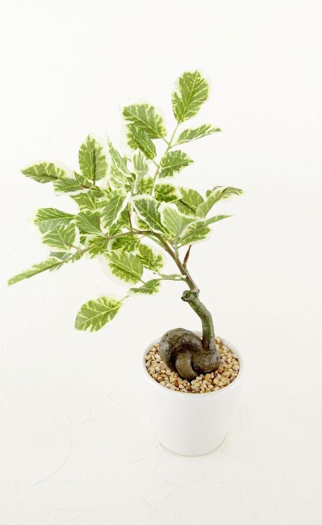 【造花 観葉植物】ハッピーツリーポット(インテリアグリーン)