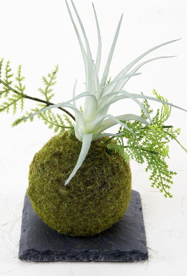 【造花 観葉植物 インテリアグリーン】こけ玉 ジャパニーズモダンアレンジメントF(下皿付き)