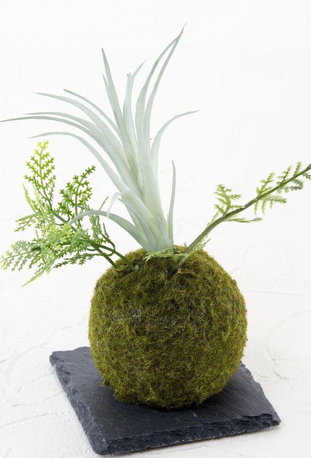 【造花 観葉植物 インテリアグリーン】miniこけ玉 リトルジャパーニーズ(下皿付き)H