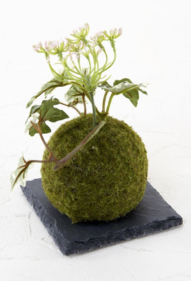 【造花 観葉植物 インテリアグリーン】こけ玉 ジャパニーズモダンアレンジメントC(下皿付き)
