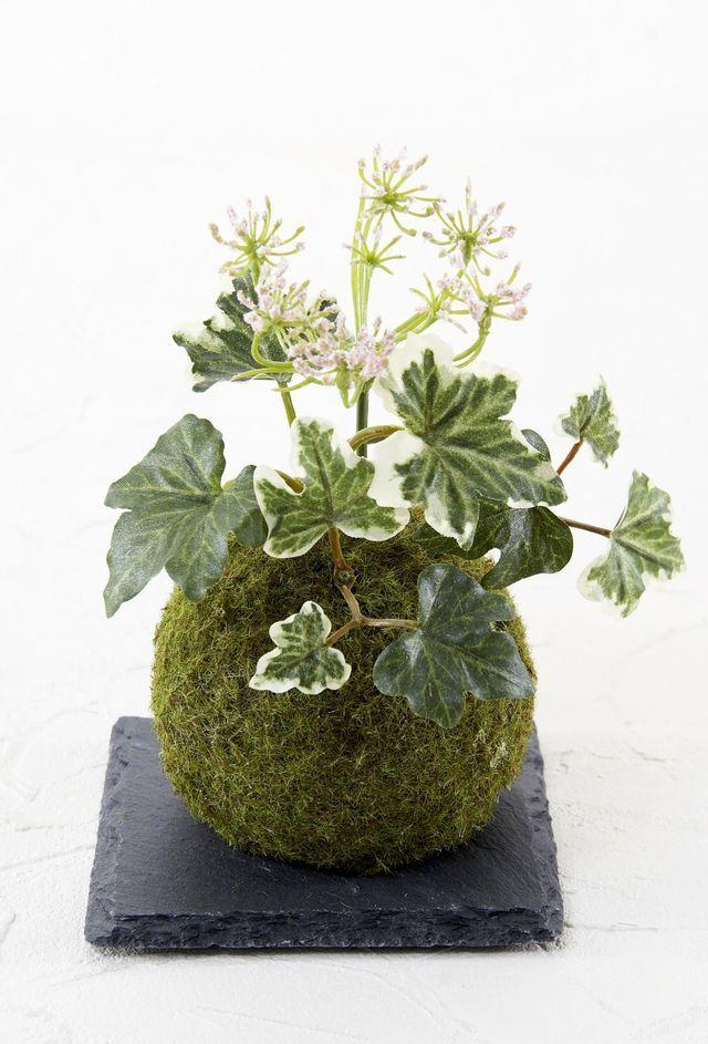 【造花 観葉植物 インテリアグリーン】miniこけ玉 リトルジャパーニーズ(下皿付き)I