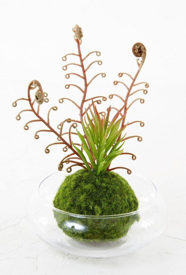 【造花 観葉植物 インテリアグリーン】こけ玉 ジャパニーズモダンアレンジメント(ガラス水盤花器付き)C