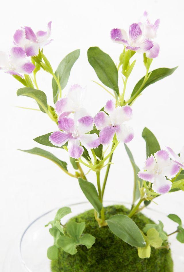 【造花 観葉植物 インテリアグリーン】miniこけ玉 リトルジャパーニーズ(下皿付き)M