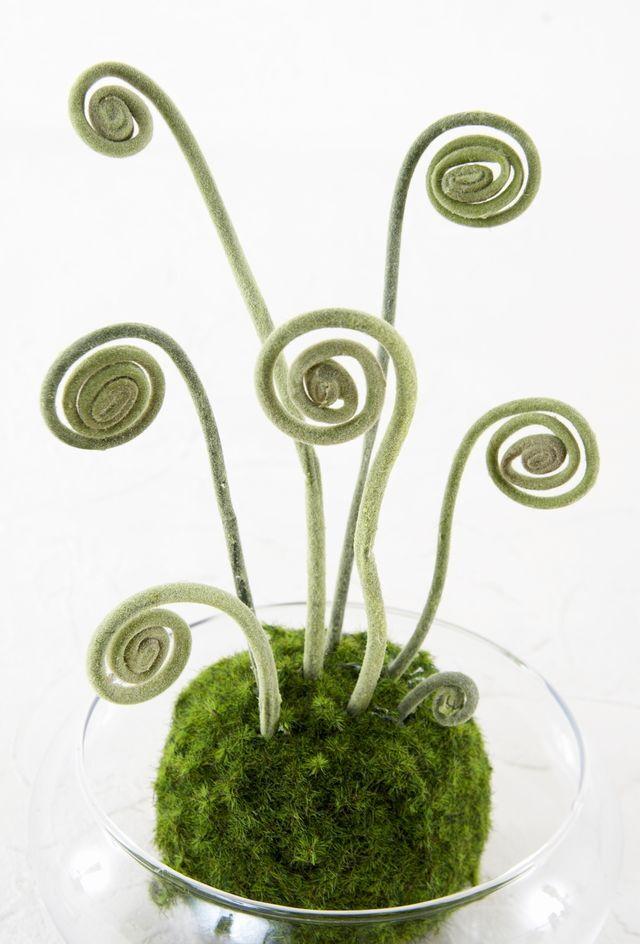 【造花 観葉植物 インテリアグリーン】こけ玉 ジャパニーズモダンアレンジメント(ガラス水盤花器付き)A