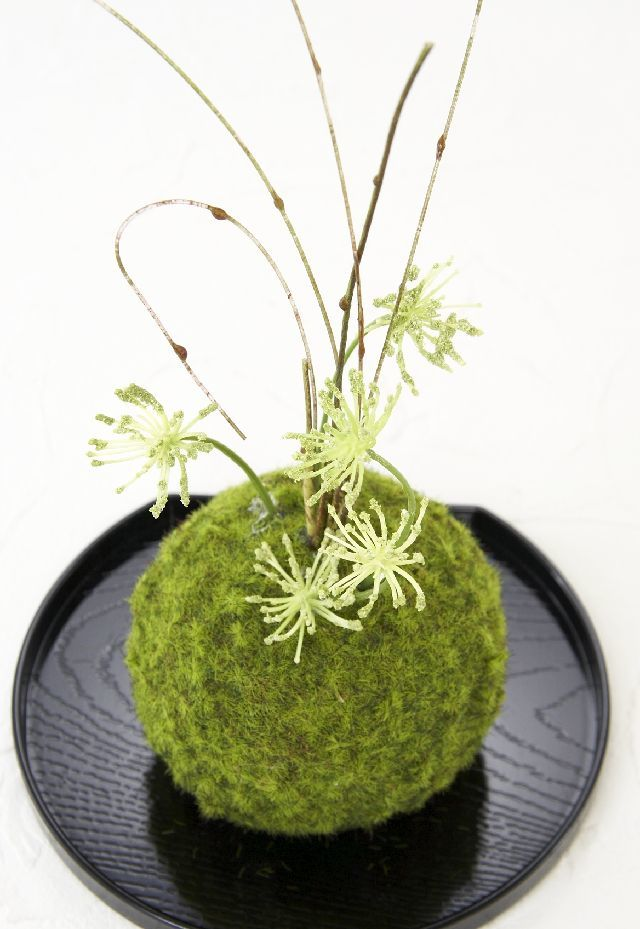 【造花 観葉植物 インテリアグリーン】こけ玉 和アレンジE(下皿付き)