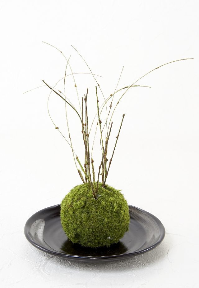 【造花 観葉植物 インテリアグリーン】こけ玉 和アレンジK(下皿付き)