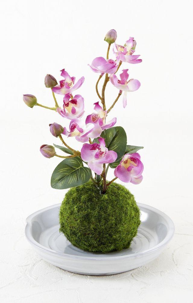 【造花 観葉植物 インテリアグリーン】こけ玉 和アレンジU(下皿付き)
