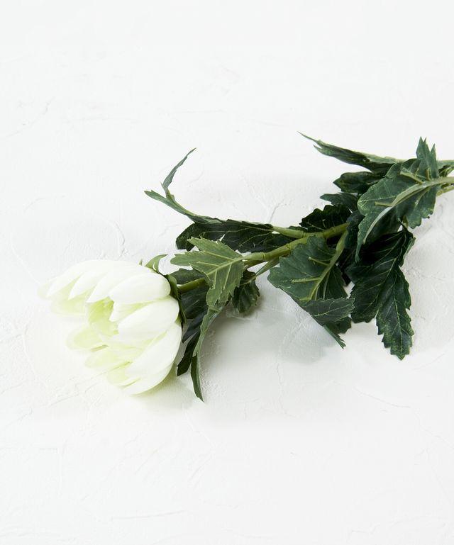 【造花・アートフラワー・シルクフラワー】菊(クリーム)