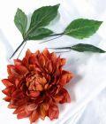 コサージュ&髪飾り(両用タイプ)(ライアンダリア/ブラウンオレンジ)