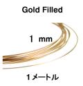 14kgfワイヤー「ラウンド・ワイヤー」(ハーフハード)【1mm×50センチ】「ゴールドフィルド」(1本)