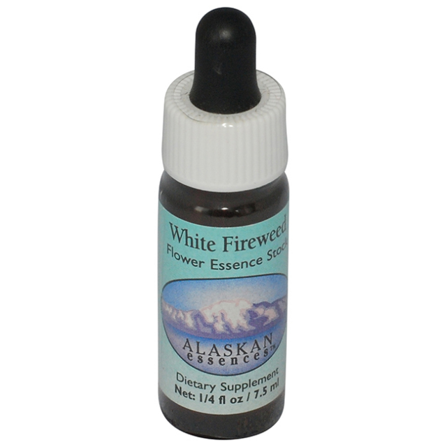[ホワイトファイヤーウィード]アラスカン・エッセンス/フラワーエッセンス/フラワーエッセンス