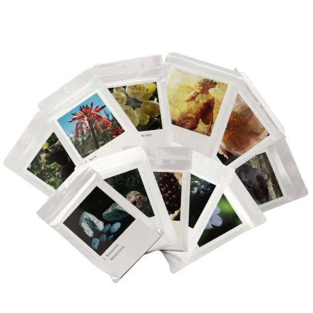 [コルテPHI写真カード(全273枚)]コルテPHIエッセンス/その他/フラワーエッセンス