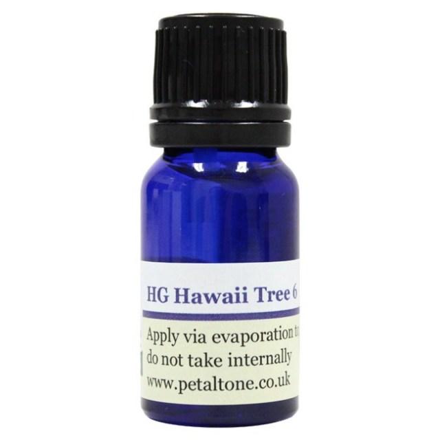 【冬の大感謝祭】[HG ハワイアンツリー6]ペタルトーン/HGハワイアンツリー