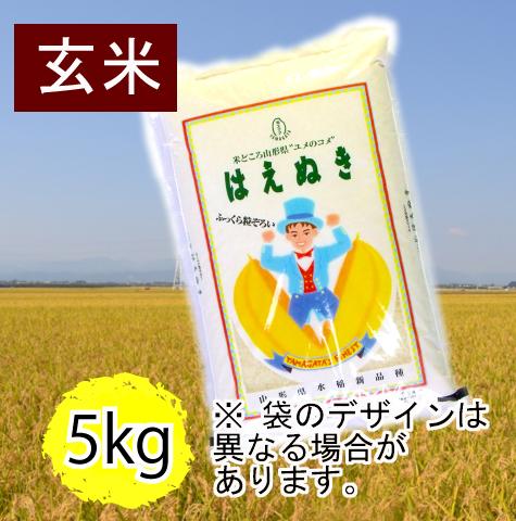 はえぬき5�玄米