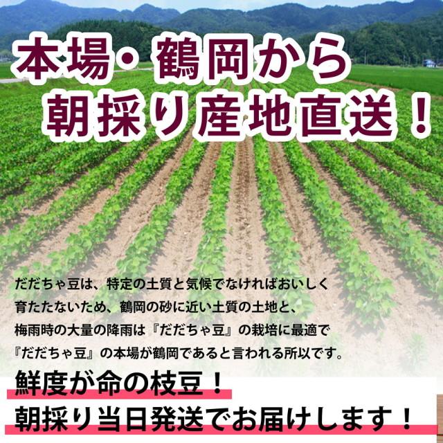 本場・鶴岡から産地直送