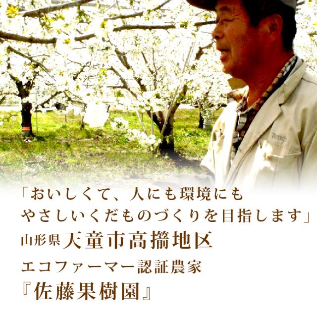 エコファーマー 佐藤果樹園