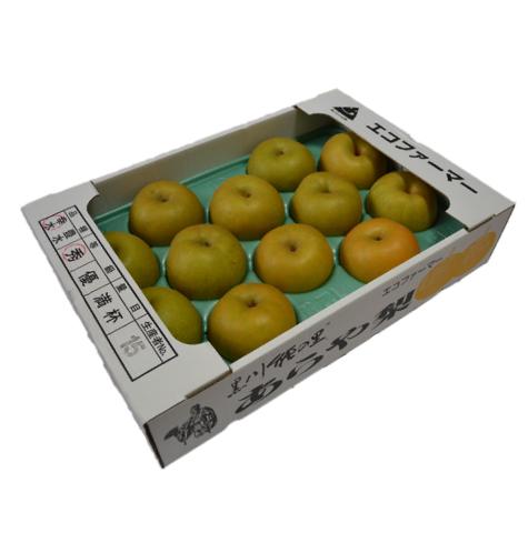鶴岡産 豊水梨5kg(12玉、4L)
