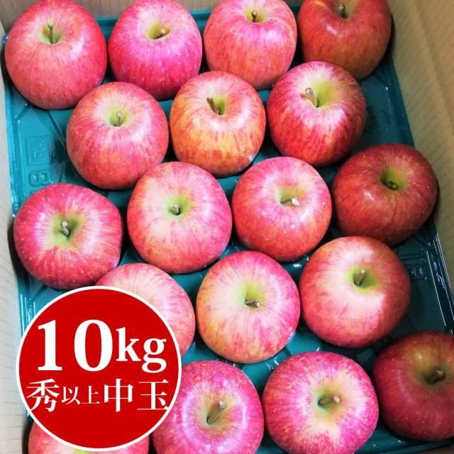 山形県産ふじりんご10kg中玉