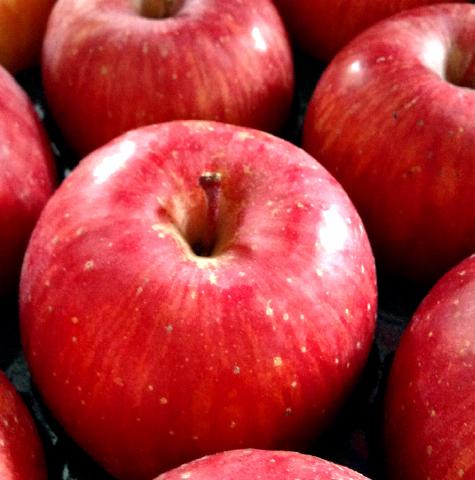 【R-26】山形産りんご品種おまかせ 5kg