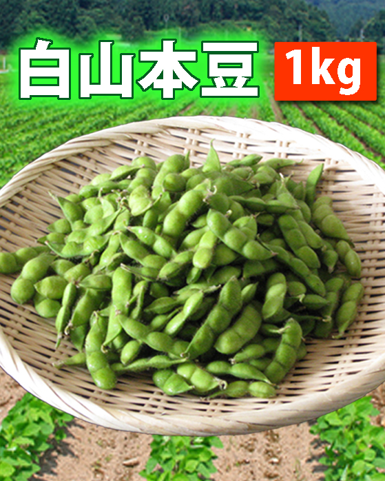 【送料無料】鶴岡産 白山だだちゃ豆(本豆)1kg 山形セレクション認定品