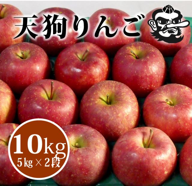 【R-25】天狗印のふじりんご10kg