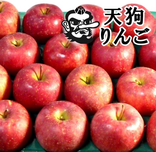 【R-24】天狗印のふじりんご5kg
