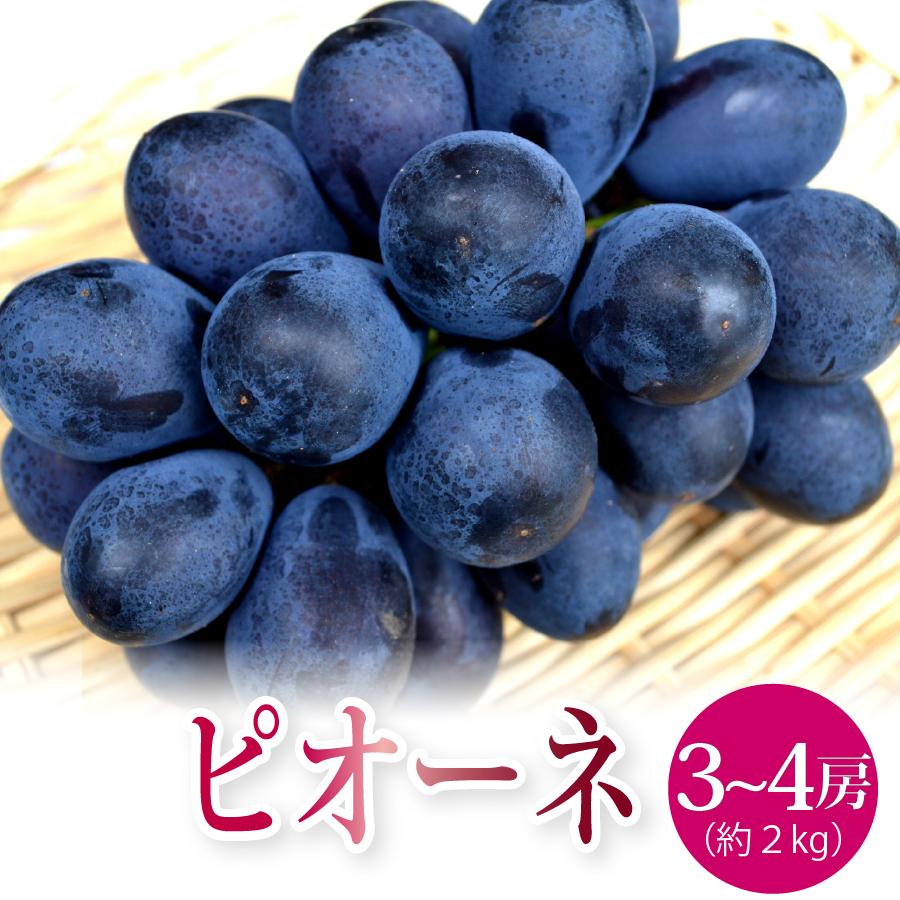山形県産ピオーネ2kg(3~4房)