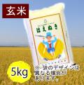 はえぬき5㎏玄米