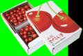 [N-1]【送料無料】寒河江産さくらんぼ佐藤錦バラ詰め1kg/朝採り/露地栽培/高品質贈答にも