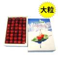 [O-3] 大玉!寒河江・西村山産 紅秀峰・並び詰め500g