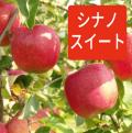 豊田のりんご「シナノスイート」10kgバラ詰