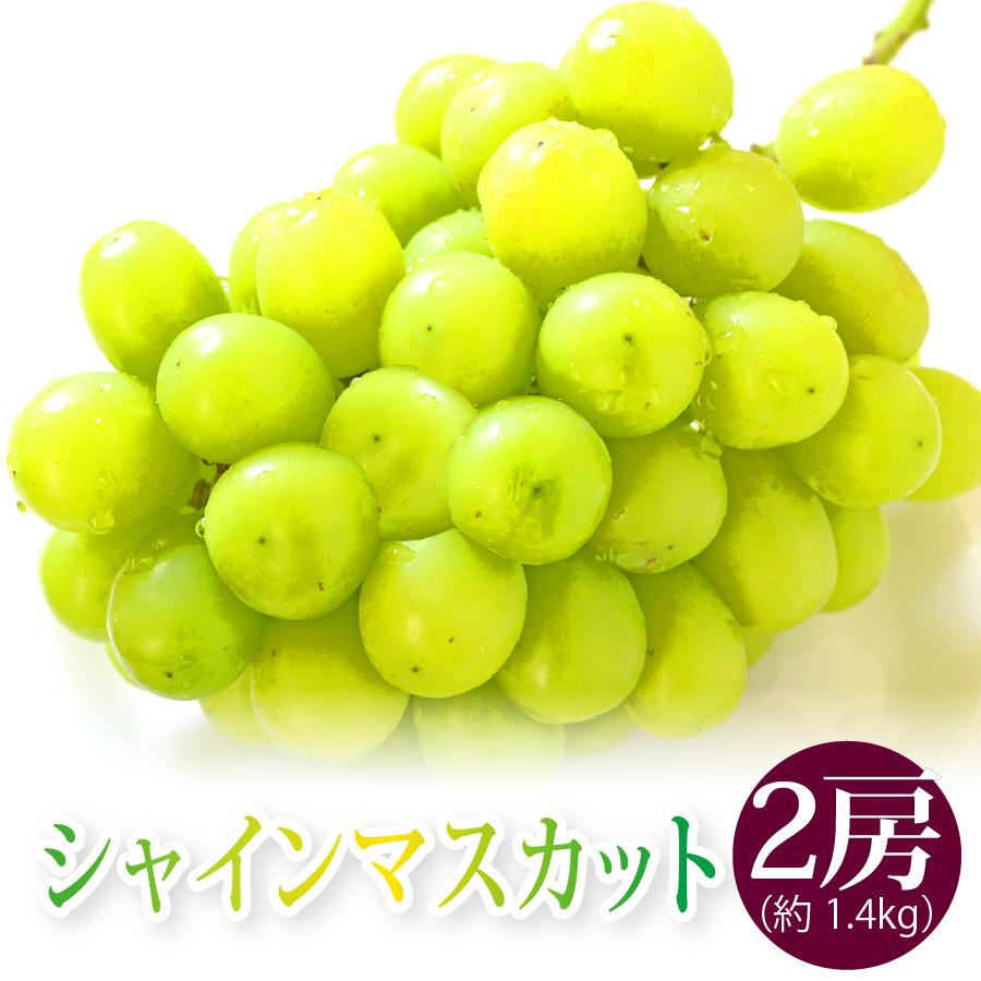 山形県産シャインマスカット2房(約1.4kg)
