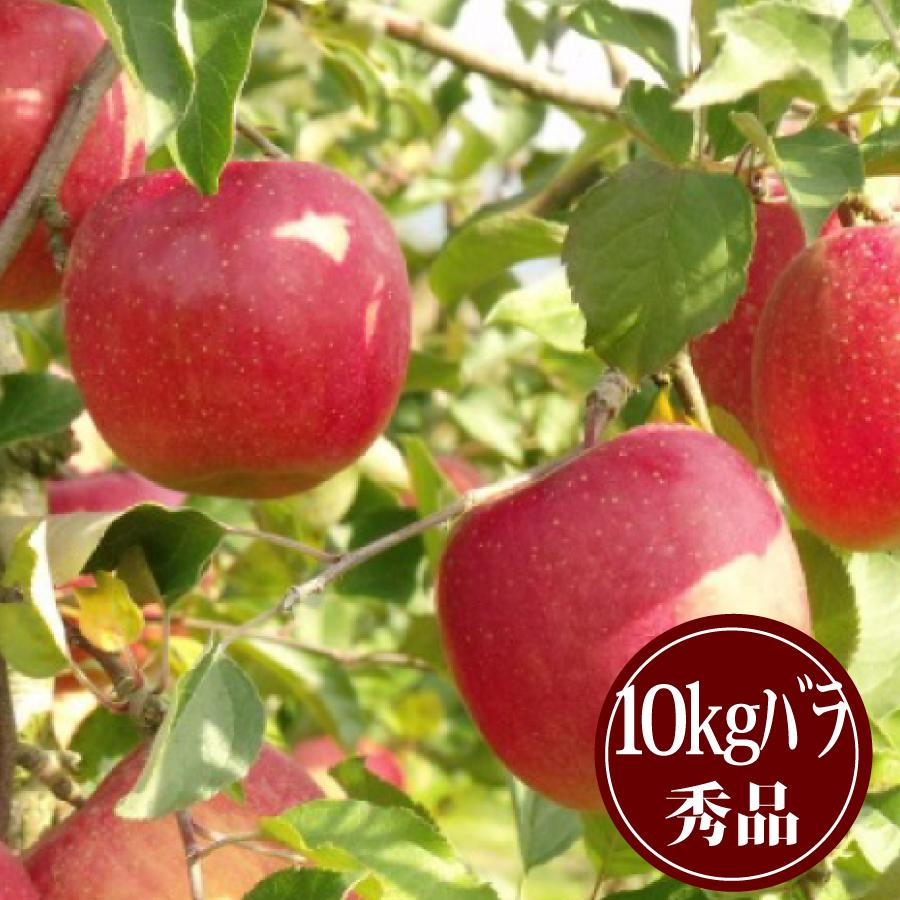 豊田の蜜入りふじりんご10kgバラ