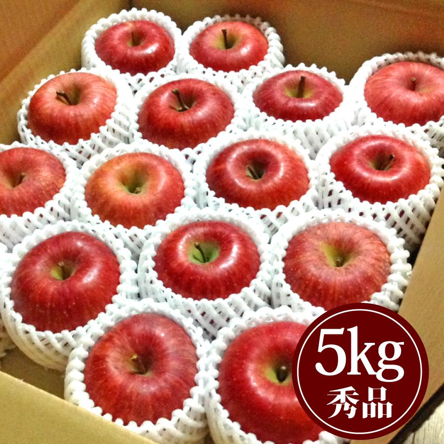 豊田の蜜入りふじりんご5kg贈答用